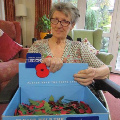 Remembrance Poppys